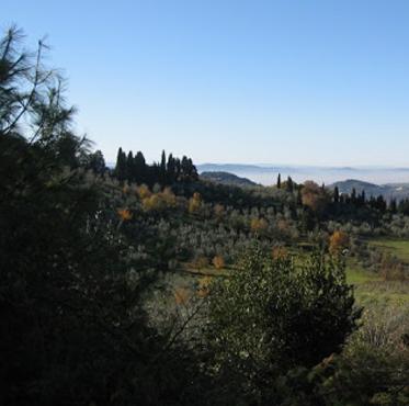 Pleasant Hills